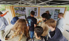 Skatepark im neuen Freizeitpark Moers: Präsentation des Vorentwurfs